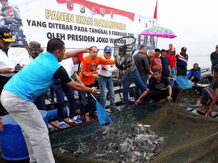 Peran BPBL Ambon Dalam Teknologi Budidaya Ikan Bubara (Caranx sp)